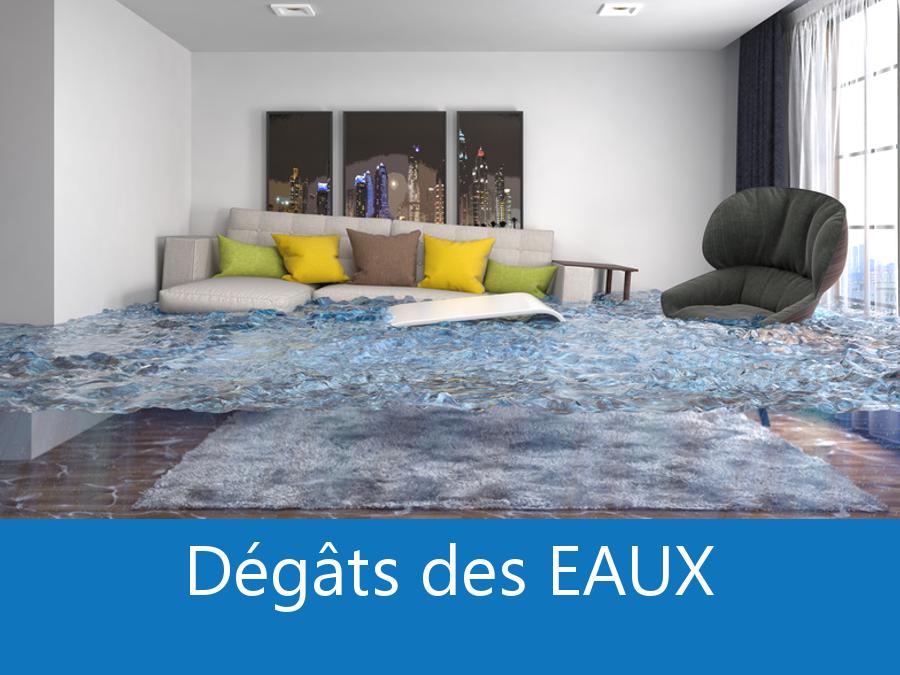 expert dégâts des eaux 21, constatation dégâts des eaux Dijon, expertise dégâts des eaux Beaune, expert indépendant dégâts des eaux Dijon,